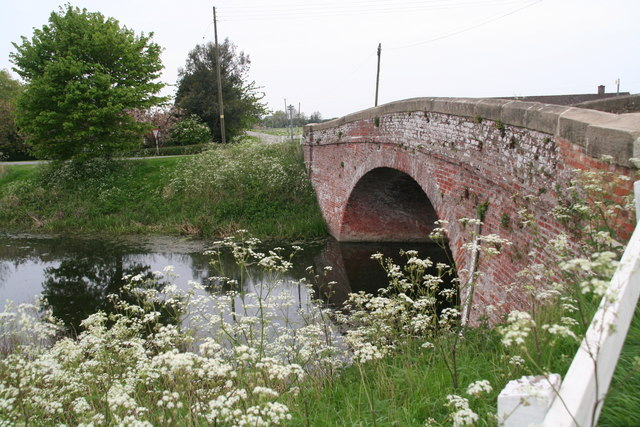File:Cow Parsley in May by Stone Bridge Drain - Geograph - 3961868.jpg