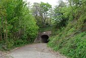 Disused A35 Tunnel - Geograph - 413761.jpg