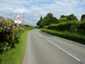 On the Brewood Road towards Coven - Geograph - 4074100.jpg