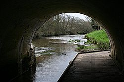 Footpath under the Bridge - Geograph - 155193.jpg