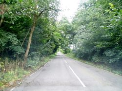 Coopers Lane Road near Northaw - Geograph - 3660422.jpg