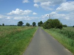 Broad Drove West - Geograph - 4544920.jpg