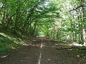 Abandoned A602 near Watton-at-Stone - Coppermine - 12017.jpg