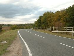 Part of Newton Road, heading towards Newton village - Geograph - 1557113.jpg