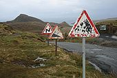 Signs on Uig-Staffin road - Coppermine - 20600.jpg
