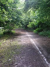 Abandoned A602 near Watton-at-Stone - Coppermine - 12022.jpg