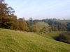 Coombe Hill lower slopes - Geograph - 273718.jpg