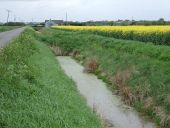 Drain beside Kings Delph Drove - Geograph - 2937899.jpg