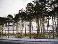 A snowy view from Annadale services on the A74(M) - Coppermine - 4915.jpg