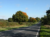 Autumn on the A1304 - Geograph - 1008719.jpg