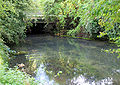 River Itchen by A34 Bridge - Geograph - 981721.jpg