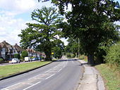 B556 Muttons Lane, Potters Bar - Geograph - 1413492.jpg