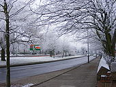 New Year Frost - Geograph - 1101258.jpg