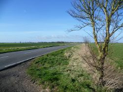The road from Pidley to Old Hurst - Geograph - 3861319.jpg