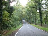 The road from Finchampstead to Eversley - Geograph - 64518.jpg