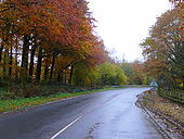 B4221 heading towards Newent - Geograph - 1043911.jpg