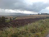 Old A9. Between Findo Gask and Forteviot junctions. - Coppermine - 20142.JPG
