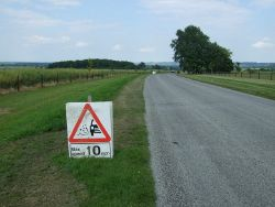 Minor road towards Woolsthorpe By Belvoir - geograph-4041004-by-JThomas.jpg