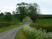 Lane to Haddon - Geograph - 3988879.jpg