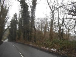 Pickford Road, Cheverell's Green - Geograph - 5283005.jpg