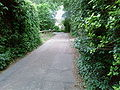A country lane - Coppermine - 13084.jpg