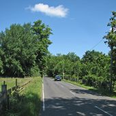 On Clayhithe Road in June - Geograph - 4514137.jpg