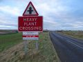 A99 Bridge of Wester - Crossroads Heavy plant crossing.jpg
