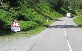 A832 Red squirrel crossing.jpg