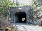 Axminster Tunnel, Thistle Hill - Geograph - 160226.jpg