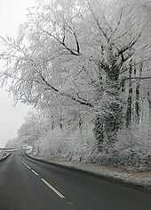 Hoar-frosted copse by the B4058 - Geograph - 1101669.jpg