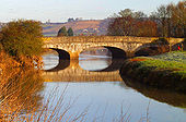 Great Bow Bridge, Langport - Geograph - 29886.jpg