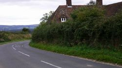 Linch Road, West Sussex - Geograph - 1487789.jpg