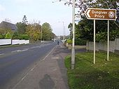 Chapel Road, Dungiven - Geograph - 594543.jpg