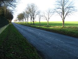 The road to Steeple Morden - Geograph - 3771975.jpg