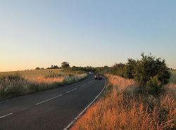 Limekiln Hill on a July evening - Geograph - 3561704.jpg