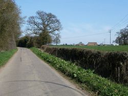Pepsal End Road - heading northwards - Geograph - 2873396.jpg