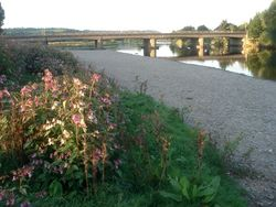Bridge at Glasbury - Geograph - 540411.jpg