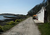 Road on Canna - Coppermine - 17815.jpg