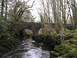 River Teifi and Henllan Bridge - Geograph - 724320.jpg