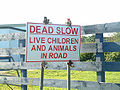 Cornwall sign Dead and Alive? - Coppermine - 1201.JPG
