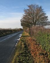 Between Thriplow and Fowlmere - Geograph - 5222196.jpg